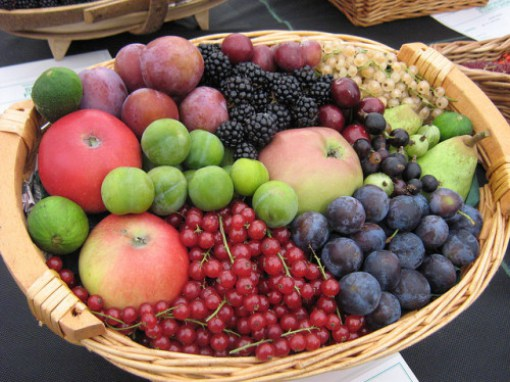 Fruit-basket-Sarah-Barker-e1425305707978