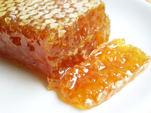 Honey-Bioni-Bites-e1421939287348