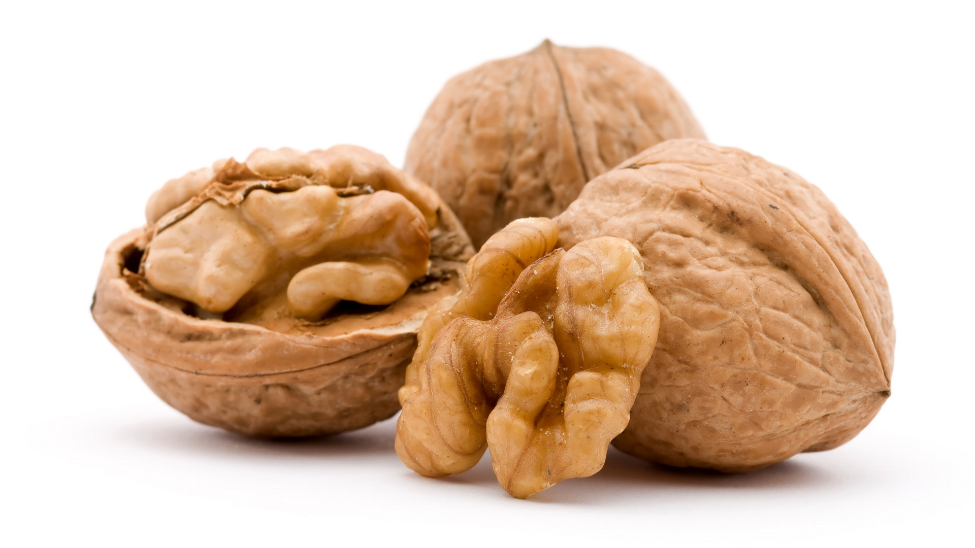 dry walnut fruit studio isolated closeup
