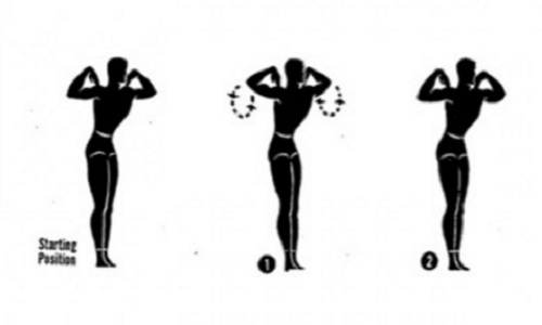 Exercise 8 For Proper Body Posture