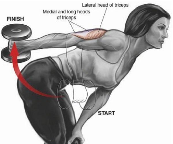 Упражнения для прокачки трицепсов. Техника выполнения в картинках