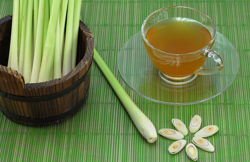 Как сделать чай из лемонграсса, чтобы избавиться от дрожжевой инфекции